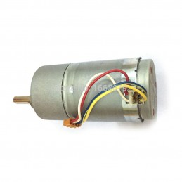 Powerful High Torque DC Gear Motor 12V 100RPM 37GB
