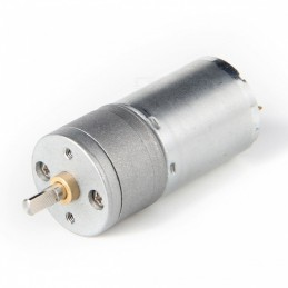 High Torque Gear Motor 12V 100RPM 25GA