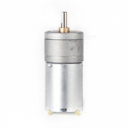 High Torque Gear Motor 12V 100RPM 25GA