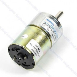 High Torque Gear Motor 12V DC 300 RPM